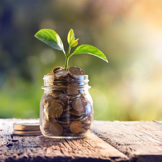 Accesso al microcredito - Ius & Nomos